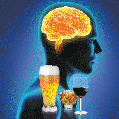 Alcohol and the Developing Brain (DVD)